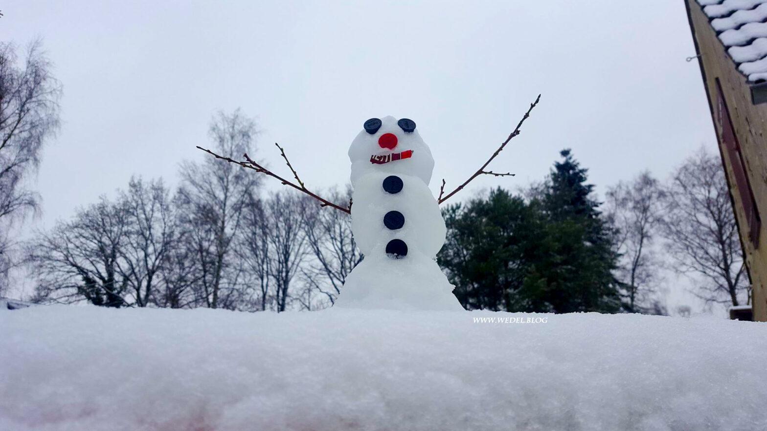 Wintergeschichten I